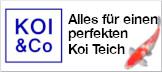 KOI & Co - Alles für den Koi und seinen Teich